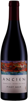2017 Coombsville Haynes Old Block Pinot Noir